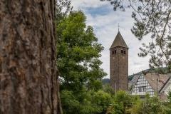 Saalhausen-im-Sommer-24