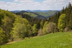 Hubertusblick Nordenau 3