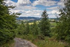 Blick-auf-Schmallenberg-1