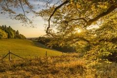 Herbst-am-Rothaarsteig