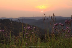 Sonnenuntergang im Sauerland 1