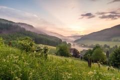 Morgenstimmung im oberen Sauerland