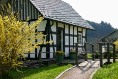 sauerland-fruehling-004
