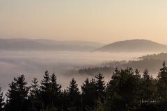 Nebel_Schmallenberg_092021_17