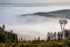 Nebel_Schmallenberg_092021_21