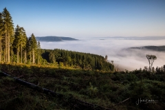 Nebel_Schmallenberg_092021_26