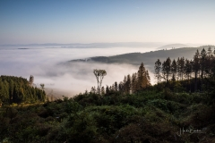 Nebel_Schmallenberg_092021_27