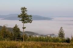 Nebel_Schmallenberg_092021_29
