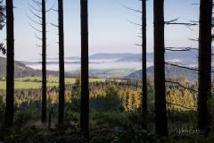 Nebel_Schmallenberg_092021_34