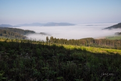 Nebel_Schmallenberg_092021_36