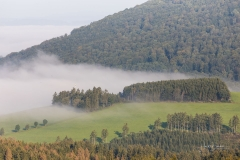 Nebel_Schmallenberg_092021_37