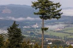 Nebel_Schmallenberg_092021_52