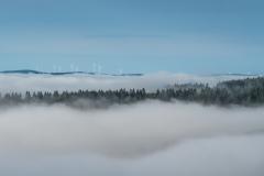 Nebel im Hochsauerland
