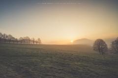 Sonnenaufgang in Westfeld-Ohlenbach