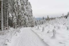 Schmallenberg-Schanze im Winter 25