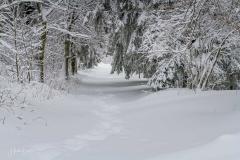 Schmallenberg-Schanze im Winter 21