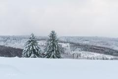 Schmallenberg-Schanze im Winter 1