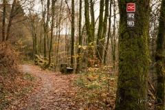 Schluchten-Brueckenpfad-06