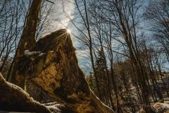 schluchten-brueckenpfad-winterberg-001