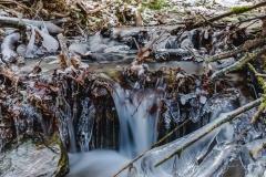 schluchten-brueckenpfad-winterberg-019