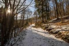 schluchten-brueckenpfad-winterberg-023