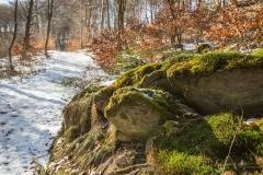 schluchten-brueckenpfad-winterberg-024