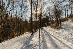 schluchten-brueckenpfad-winterberg-026