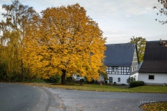 Herbst-in-Obringhausen-3