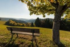 Schmallenberger-Herbstlandschaft-1