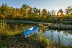 Schmallenberger-Herbstlandschaft-5