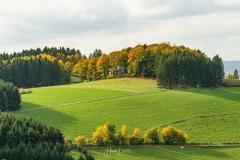 Aussicht vom Sauerland-Höhenflug in Altenilpe 1