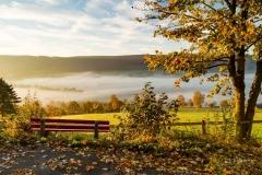 Grafschaft im Morgennebel