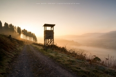 Morgendliche Aussicht vom Wesenberg auf Westfeld
