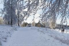 schwedensteig-heidenstrasse-winter-05