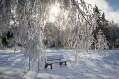 schwedensteig-heidenstrasse-winter-09