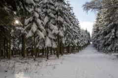 schwedensteig-heidenstrasse-winter-17