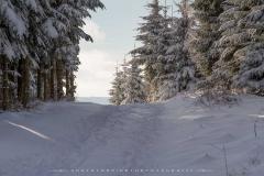 schwedensteig-heidenstrasse-winter-18