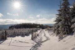schwedensteig-heidenstrasse-winter-21