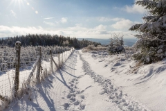 schwedensteig-heidenstrasse-winter-23