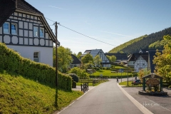 Sellinghausen-9