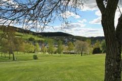 Sellinghausen 33