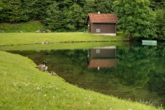Silbersee-Sommer-10