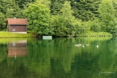 Silbersee-Sommer-13