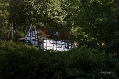 Gut_Vorwald_Sommer2021-05