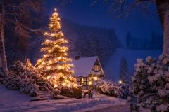 Weihnachten in Gut Vorwald 1