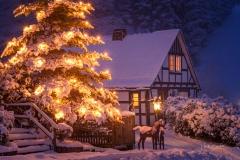 Weihnachten in Gut Vorwald 2
