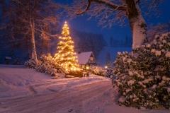 Weihnachten in Gut Vorwald 3