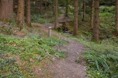 Die Lüttmecke am Hexenplatz - Waldskulpturenweg 2