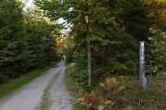 Waldskulpturenweg zwischen Kühhude und Schanze 1
