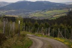 Waldskulpturenweg-Mai-2021-01